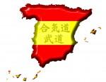 Aikikai Español